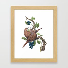 Mourning Doves Framed Art Print