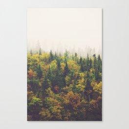 North of Wawa 02 Canvas Print