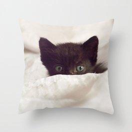 Zeze kitten Throw Pillow