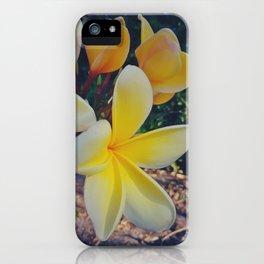 Frangipani in Yellows iPhone Case