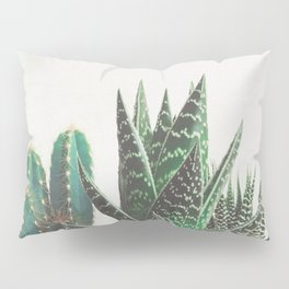 Cactus & Succulents Pillow Sham