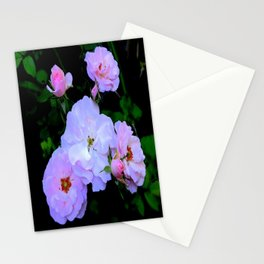 Miniature English Pink-White Roses Garden Stationery Cards