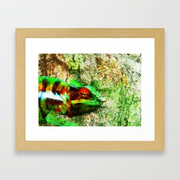 Caméléon  Framed Art Print