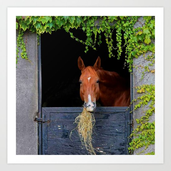 Home is where the Horse is Art Print