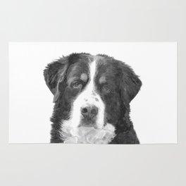 Black and White Bernese Mountain Dog Rug