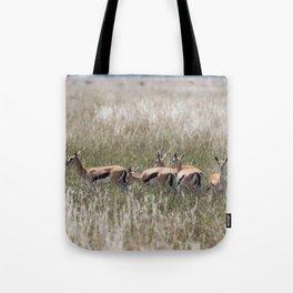 Thomson gazelles landscape, Serengeti National Park, Tanzania Tote Bag