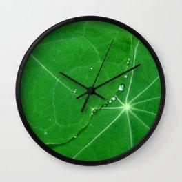 Nasturtium Dew Wall Clock