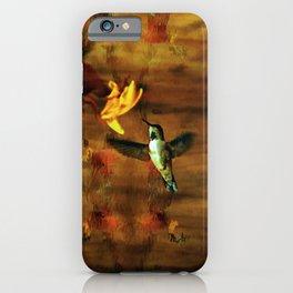 Hovering Hummingbird iPhone Case