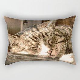 Sleeping Tigers Rectangular Pillow