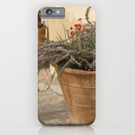 Courtyard Plants iPhone Case