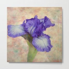 Flower Art - The Meaning Of An Iris Metal Print