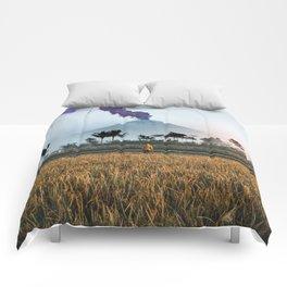 The Volcano Comforters