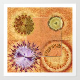 Perambulations Feel Flowers  ID:16165-100731-65461 Art Print