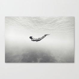 130926-7162 Canvas Print