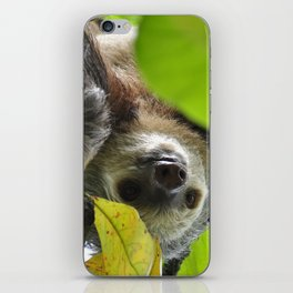 Sloth_20171105_by_JAMFoto iPhone Skin
