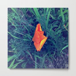 Poppy Earth Mother Metal Print