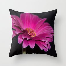 Pink Gerbera Throw Pillow