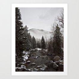 Mid Winter Art Print