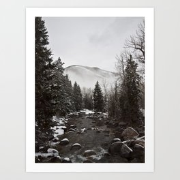 Mid Winter Art Print