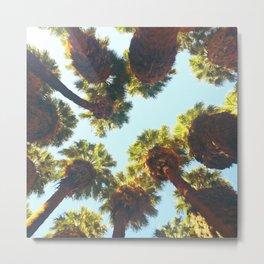 Cali Fan Palms Metal Print
