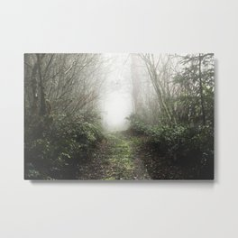 Pacific Northwest Trails - 121/365 Nature Photography Metal Print