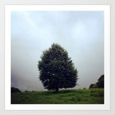 The Lone Tree Art Print