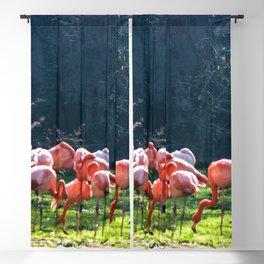 Flamingos Blackout Curtain