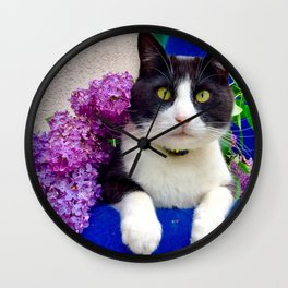 Orazio charming cat in the blue Wall Clock