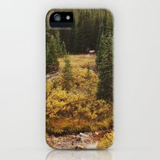 Rocky Mountain Creek Elk iPhone (5, 5s) Slim Case