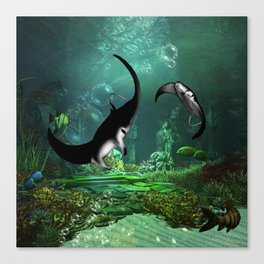 Wonderful manta rays in the deep ocean Canvas Print