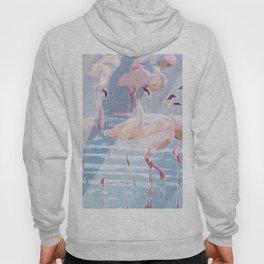 Flamingo Beach Hoody