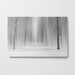Winter 12 Metal Print