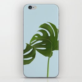 Monstera madness IV iPhone Skin