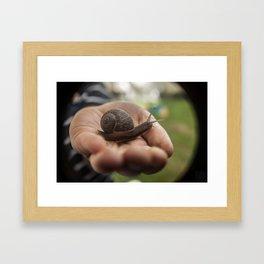 LITTLE PET Framed Art Print