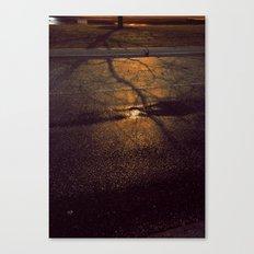 Light Rain Canvas Print