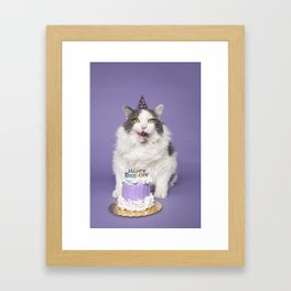 Happy Birthday Fat Cat In Party Hat With Cake Framed Art Print