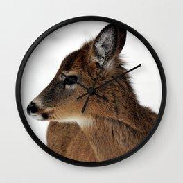 Chevreuil 003 Wall Clock