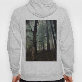 misty forest Hoody