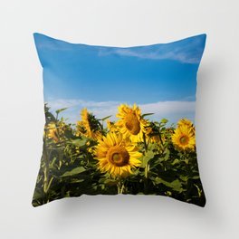 Sunflowers in the Summer Throw Pillow