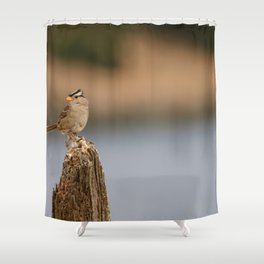 Checking things out! Shower Curtain