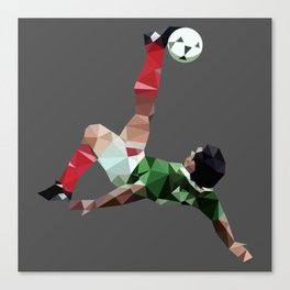 Hugoool Canvas Print