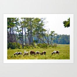 Wild Horses of Chincoteague Art Print