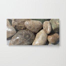 Petoskey Stones Metal Print