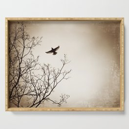 Bird Flying Tree Photography, Brown Nature Branches, Birds Fly Trees Serving Tray