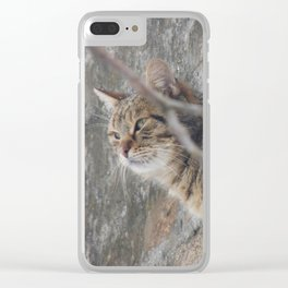 Cat view Clear iPhone Case