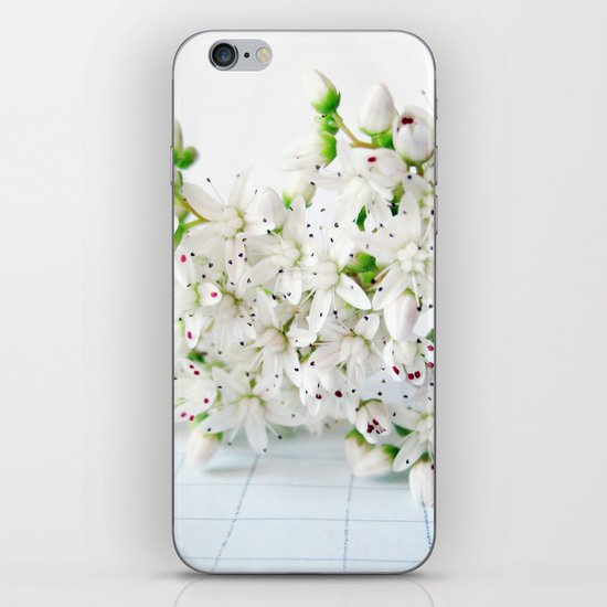 White Sedum Flowers iPhone & iPod Skin
