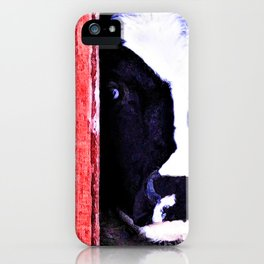 Black and White Cow Peeking thru the Red Barn Door iPhone Case