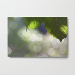 creative light Metal Print
