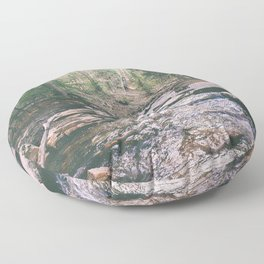 Just Around the Riverbend Floor Pillow
