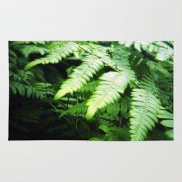 Summer ferns Rug